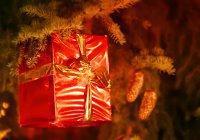 В Германии ребенок вызвал полицию из-за подарка