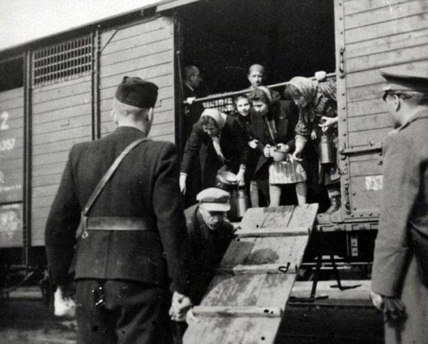 Евреев сажают на поезд, едущий в концлагерь.