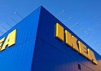 Инструкцию по сборке салата оливье выпустила IKEA (ФОТО)