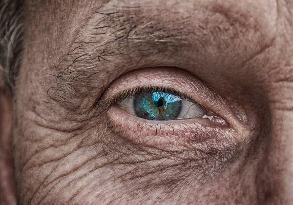 Количество дермальных фибробластов вместе с кожным жиром с возрастом начинает сокращаться, а защита от инфекций — ослабевать