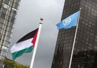 Палестина намерена стать полноправным членом ООН