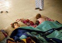 Кадыров сообщил о возвращении из Ирака 30 российских детей