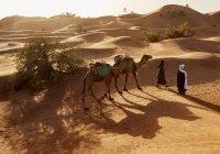 Почему из всех пророков только Мухаммад (мир ему) удостоился Мираджа?