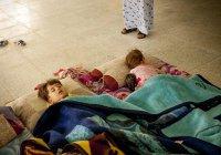 Российские дети, вернувшиеся из Ирака, пройдут реабилитацию