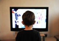 Представлен телевизор, который способен сворачиваться в трубочку (ВИДЕО)
