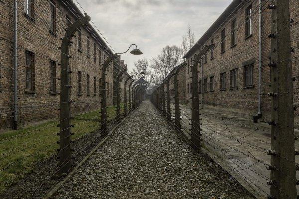 Ученые исследовали продолжительность жизни переживших Холокост.