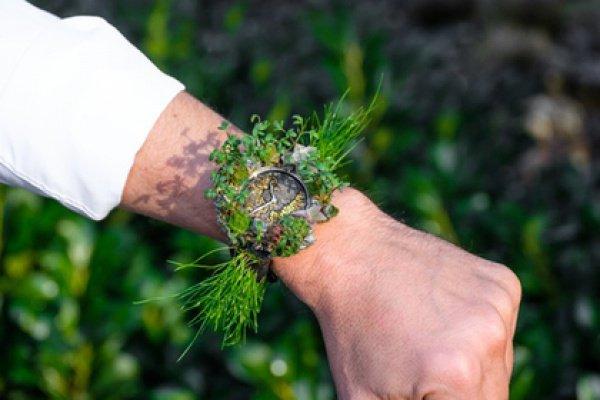 42-миллиметровый корпус и ремешок часов покрыты растениями и грибами: мхом, суккулентами, эхевериями, кресс-салатом, диким луком, плесневыми грибами