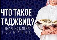Словарь исламских терминов: что такое таджвид?