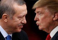 Эрдоган заявил об «историческом взаимопонимании» с Трампом по Сирии