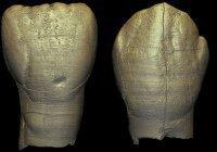 Обнаружены останки таинственного древнего человека