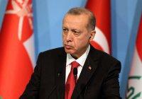 Эрдоган уполномочил себя управлять экономикой Турции