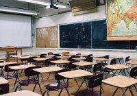 В Петербурге во 2 классе школы учится 37-летний мужчина