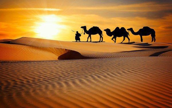 Как встречали Пророка (мир ему) в Медине