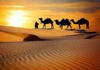 Как встречали Пророка Мухаммада (мир ему) жители Медины?