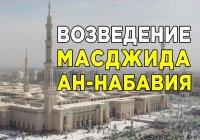 Как выглядела мечеть ан-Набавия до и после смерти Пророка Мухаммада (мир ему)?