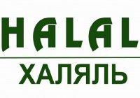 Всемирный день «Халяль» пройдет в Самаре