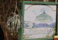 Атаку на мусульманский поселок предотвратили в США