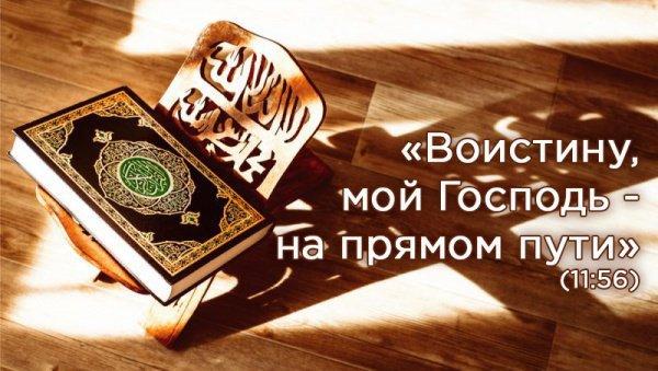 4 вида знаний в исламе