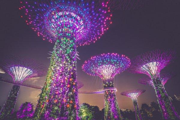 Наиболее высокий индекс безопасности зафиксирован у Сингапура (97 единиц)