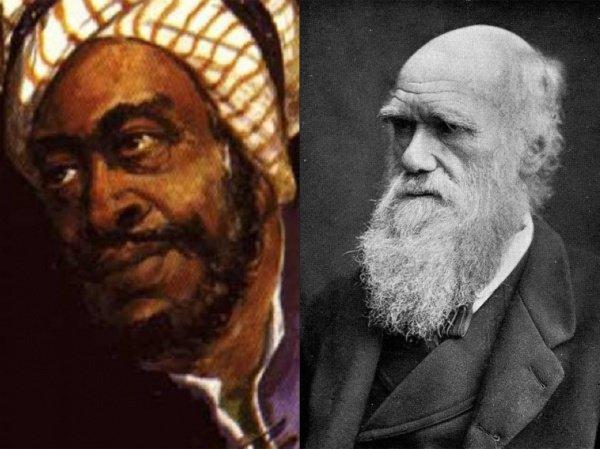 Мусульманский ученый, который за 1000 лет до Дарвина открыл механизмы эволюции