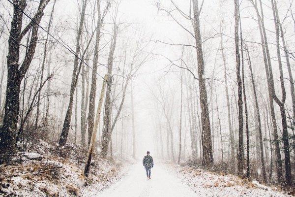 Прогнозируются как 15–20-градусные морозы, так и оттепели