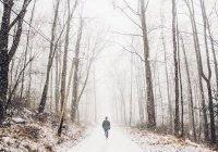 Синоптики рассказали о погоде в России на 2 ближайших месяца