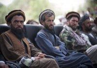 «Талибан» пообещал освободить Афганистан от террористов