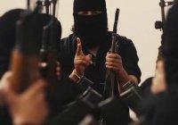 Франция примет 130 боевиков ИГИЛ