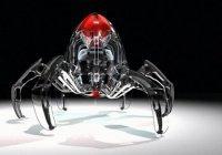 Гуттаперчевых роботов-пауков создали в Швейцарии