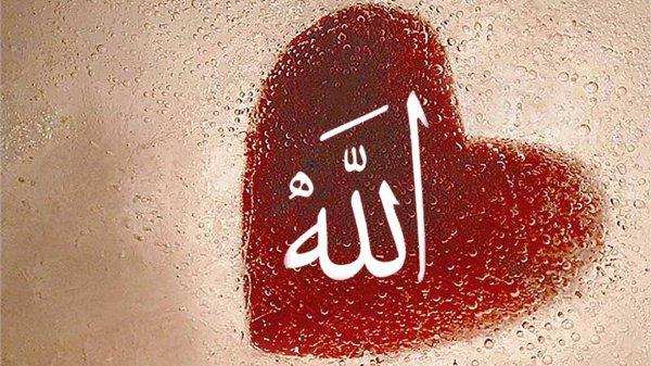 Как обрести довольство Аллаха?