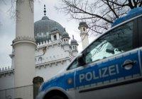 Мусульмане Нидерландов обеспокоены всплеском исламофобии