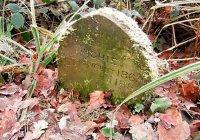 В Британии нашли старинную не человеческую могилу (ФОТО)