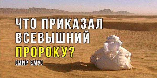 Что приказал Всевышний Пророку Мухаммаду? (мир ему)