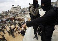 Исследование: ИГИЛ перестало быть главной угрозой человечеству