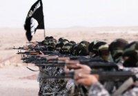 Постпред РФ в ООН: ИГИЛ сохранило прежний уровень доходов