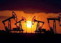 Саудовская Аравия будет добывать нефть по всему миру