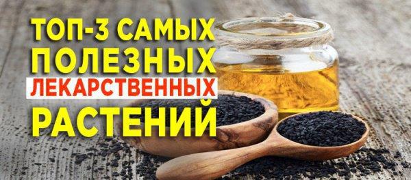 3 наиболее полезных лекарственных трав согласно Сунне
