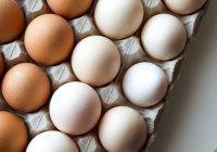 Выявлено 6 продуктов, сжигающих жир на животе