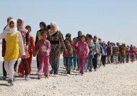В Сирию вернулись более 1,6 млн беженцев
