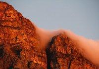 В ЮАР турист выжил после падения с 20-метровой высоты