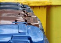 В России создают «умную» систему сортировки мусора